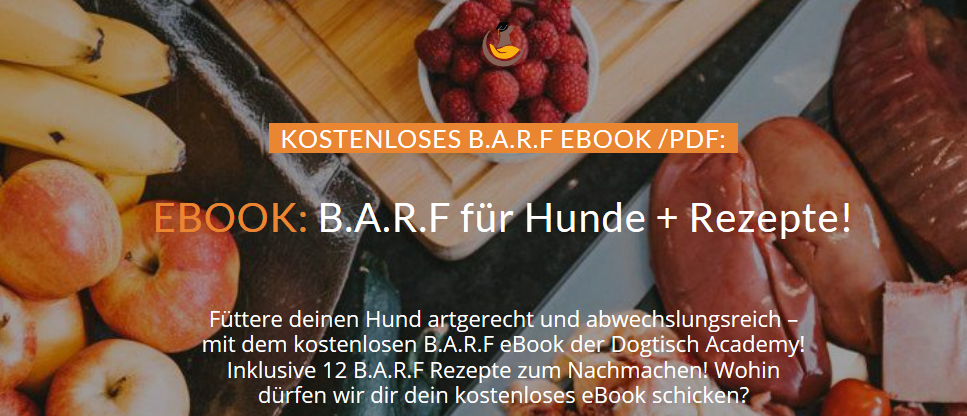 B.A.R.F für Hunde eBook PDF Dogtisch Academy